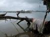 Nyanyano Harbor