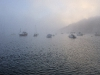 UK - 43: Mornings Mists, Polruan Port