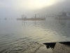 UK - 45: Mornings Mists, Polruan Port