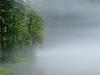 Koppenwinkel Lake - Mists after Heavy Rainfall