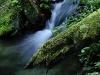RO-19: Hidden Stream, Retezat NP