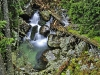 RO-06: Ancient Forest - Wild Stream in Retezat NP