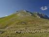 IT49 - Monte Vettore
