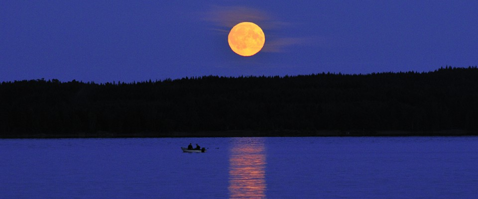 Midsummer Moonrise in Vaermland