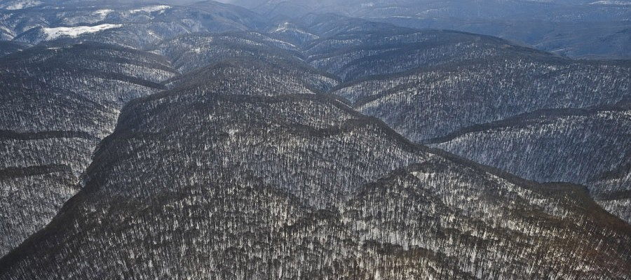 Nationalpark Semenic-Cheile Carașului, Rumänien: Flugaufnahme des riesigen Nera-Quellen-Urwaldes. Das 5500 Hektar große Reservat bewahrt den größten Buchenurwald der EU. Außerhalb des Waldreservats finden sich im Nationalpark aber frische Holznutzungen in Urwaldbeständen. (c) Matthias Schickhofer