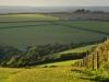 UK - 08: Hills near Foway.