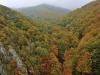 Domogled Nationalpark, Urwald im Herbst