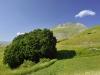 IT28 - Monte Vettore