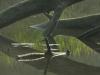 Waterworld of Prater