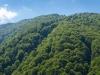 Valea Latei - Romania